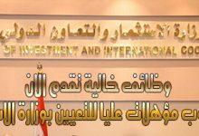 وزارة الاستثمار