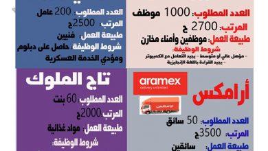 مجموعة عمال مصر