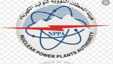 هيئة المحطات النووية لتوليد الكهرباء