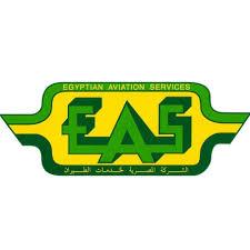 الشركة المصرية لخدمات الطيران